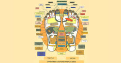 La Riflessologia Plantare: un trattamento per tutte le patologie