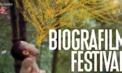 Araba Fenice al Biografilm Festival 2018 al parco del cavaticcio